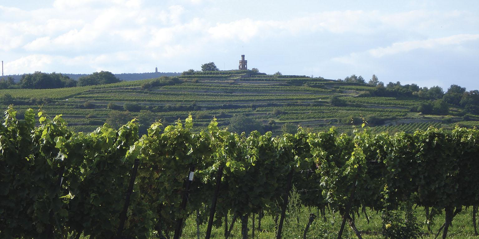 Permalink auf:Pfalzerleben – Meine Heimat
